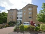 Thumbnail to rent in Orchard Brae, Hamilton, South Lanarkshire