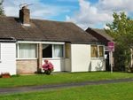Thumbnail for sale in Beech Avenue, Bishopthorpe, York