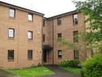 Thumbnail to rent in South Beechwood, Murrayfield