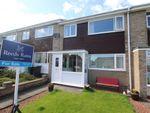 Thumbnail to rent in Westhills, Tantobie, Stanley