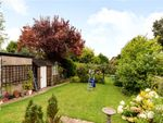 Thumbnail for sale in Alresford Road, Winchester