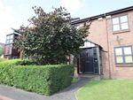 Thumbnail to rent in Portland Mews, Sandyford, Newcastle Upon Tyne
