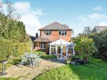 Thumbnail for sale in Battle Road, St. Leonards-On-Sea, East Sussex