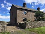 Thumbnail to rent in Belford