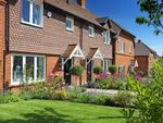 Thumbnail for sale in Lambton Close, Medstead, Hampshire