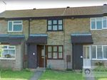 Thumbnail to rent in Harebell Way, Carlton Colville, Lowestoft