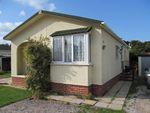 Thumbnail for sale in Beechwood Park, (5425), Dawlish Warren, South Devon