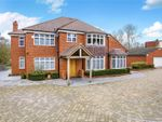 Thumbnail for sale in Main Road, Knockholt, Sevenoaks, Kent