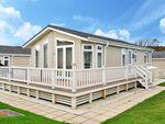 Thumbnail for sale in Naish Estate, Barton On Sea, New Milton