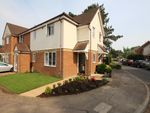 Thumbnail to rent in Martin Way, Letchworth Garden City