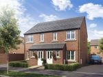 """Thumbnail to rent in """"The Alnwick"""" at Boughton Green Road, Northampton"""