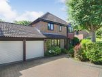 Thumbnail to rent in Overton Shaw, East Grinstead, West Sussex