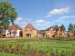 Thumbnail to rent in Heronden Grange, High Halstow, Rochester, Kent