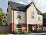 "Thumbnail to rent in ""The Wallington"" at Holden Close, Biddenham, Bedford"