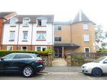 Thumbnail to rent in Campbell Road, Bognor Regis