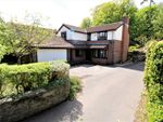 Thumbnail for sale in St. Georges Hill, Easton-In-Gordano, Bristol