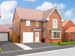 "Thumbnail to rent in ""Halstead"" at Ripon Road, Kirby Hill, Boroughbridge, York"