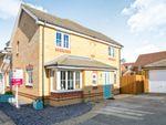 Thumbnail to rent in Lapwing Way, Soham, Ely