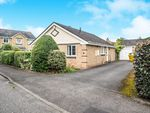 Thumbnail for sale in Park View, Felton, Morpeth