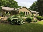 Thumbnail for sale in North Lodge, Ovingham