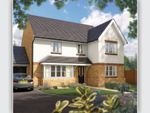 "Thumbnail to rent in ""The Chester"" at Fulmar Road, Bude"