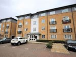 Thumbnail to rent in Ovaltine Drive, Kings Langley