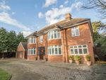 Thumbnail for sale in Hertford Road, Great Amwell, Hertfordshire