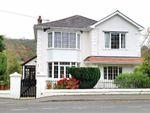 Thumbnail for sale in New Road, Llandysul, Carmarthenshire