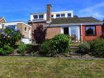 Thumbnail to rent in Maeshendre, Aberystwyth, Ceredigion
