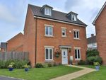 """Thumbnail to rent in """"The Sussex"""" at Hatchlands Park, Ingleby Barwick, Stockton-On-Tees"""