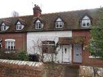 Thumbnail for sale in Westbere Lane, Westbere, Canterbury, Kent