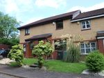 Thumbnail to rent in Herald Grove, Motherwell