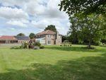 Thumbnail for sale in Tilney St Lawrence - Kings Lynn, Norfolk