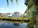 Thumbnail to rent in Waters View, Yarwell Mill, Peterborough
