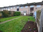 Thumbnail for sale in Caie Walk, Bury St. Edmunds