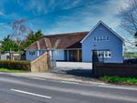 Thumbnail for sale in Fambridge Road, Mundon, Maldon