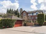 Thumbnail for sale in Greenlaw Drive, Newton Mearns, Glasgow, East Renfrewshire