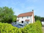 Thumbnail for sale in The Street, Takeley, Herts