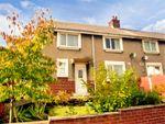 Thumbnail to rent in Holborn Crescent, Brynteg, Wrexham
