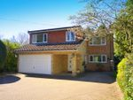 Thumbnail for sale in Horsham Lane, Ewhurst, Cranleigh