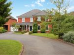 Thumbnail for sale in Humberston Avenue, Grimsby