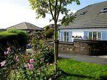 Thumbnail to rent in Chyvelah Vale, Gloweth, Truro, Cornwall