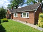 Thumbnail for sale in Charlock Close, Gloucester