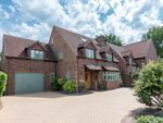 Thumbnail for sale in Whatcombe Lane, Blandford Forum