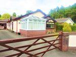 Thumbnail for sale in Ffordd Y Graig, Lixwm