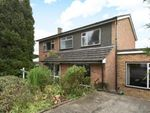 Thumbnail for sale in Downs View Close, Orpington