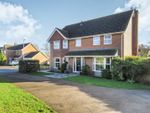 Thumbnail for sale in Brookfield Way, Bury, Ramsey, Huntingdon