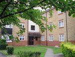 Thumbnail to rent in Tamarin Gardens, Cherry Hinton, Cambridge