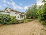 Thumbnail for sale in Chapel Road, Bunwell, Norfolk
