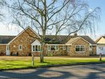 Thumbnail for sale in Warboys Road, Pidley, Huntingdon